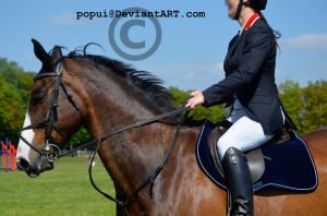 Eagle Moor showjumping_23 [final] by popui