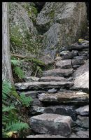 These steps are hardly seen by barefootliam