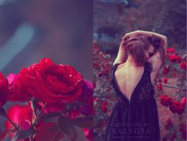 where wild roses grow II by JuliaDunin