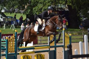 Eventing stock 17 by EquineHeart456