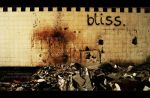 bliss by tipoe