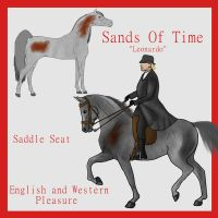 Stud: Sands Of Time by crazykate1