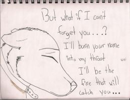 But What If I Can't Forget You? by xXZackataXx