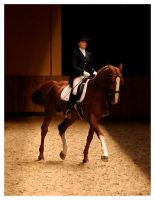 dressage 1 by paula2206-photo