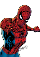 Spiderman colors by J-Skipper