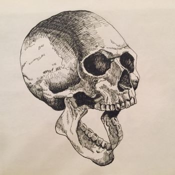 Skull 02 in Pen and Ink by JTRIII