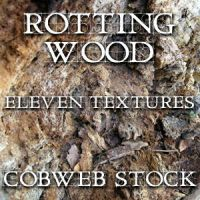 Wood:  Rotten Texture Pack by Cobweb-stock