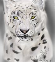 Snow Leopard by NeonDefined