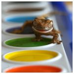 Paintgator by CatharsisJB