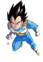 Dragonball Z - Vegeta Normal Colour V2 by TriiGuN