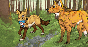 iScribble Collab: Forest Stroll by WolvenBird