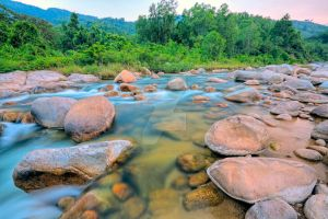 Mountain stream in jungles I by MotHaiBaPhoto