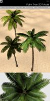 Palm Tree 3D Model by HollowIchigoBanki