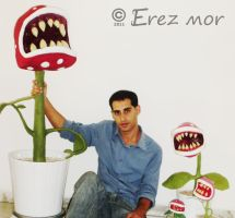 Carnivorous plants by erez-mor