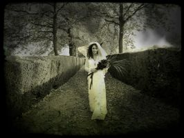 The Bride From Hell by Estruda