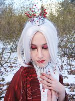 Winterberry Faerie by Sarcasm-hime