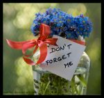 dont forget me by morho