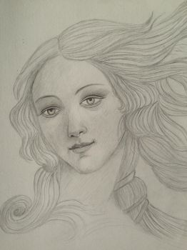 Birth of Venus (pencil drawing) by artlover-us