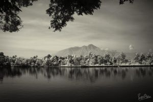 Classic Landscape by ditya