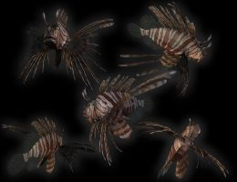 Pterois Volitans by LaJolly