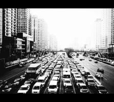 traffic black + white by RiparianVeins
