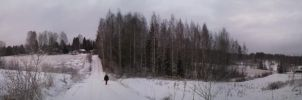 panorama pic by Micca95