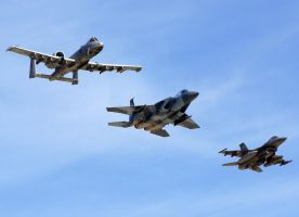 Air Combat Command Flyby by shelbs2