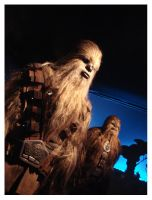 Wookies by quinzelle