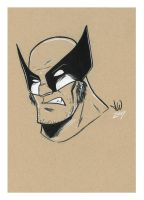 Wolverine- charcoal by mitchatt