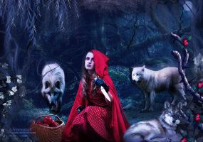Little Red Riding Hood by annemaria48