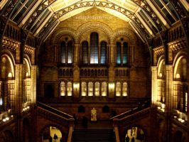 Natural History Museum by Asligg