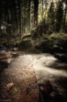 bachlauf 2 by matze-end