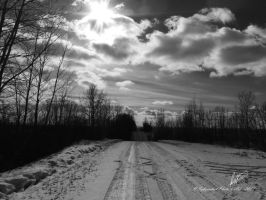 Alberta Winter Sky by Sybaristail