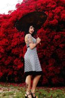Red Background by MissLindseyLou