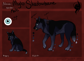 Mylo Shadowbane ::Wolves of Suralark Warrior:: by Free-Fall-Angel