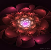 Rose of Sharon by digitalmuse66