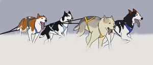 Mush Sledding Training Camp by Livid-Star
