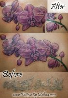 Orchids Cover-up by Melissa-Capo