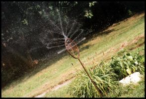 Yard Sprinkler by sapphiretiger-stock