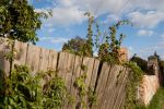 Fence, wall... by Domichal