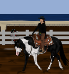 Newfoundland's Annual Show Western Pleasure Player by angry-horse-for-life