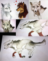 Old Copics Drawings by HailDawn