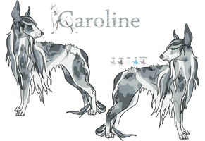 Caroline by WildWithHeart-Kennel