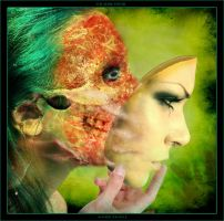the Mask I Wear by robertadelman