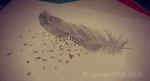 Feather Drawing by SHiNiNGSTARS3