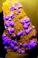 Fluorspar Under Ultraviolet And Ordinary Light by aegiandyad