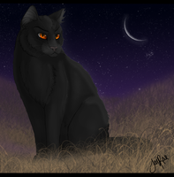 Breezepelt of WindClan by TheMoonfall
