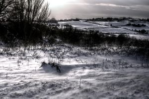 The Snows of Time by johnwaymont