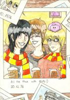 HP: All the time with idiots... 8D by Sesemonda