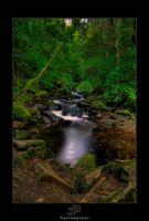 Torc Rapids by JohnMeyer